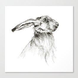 Hare 2 Canvas Print