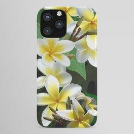 Plumeria Flowers iPhone Case