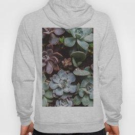 Succulent Paradise Hoody
