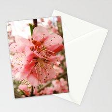 Peach Blossom Stationery Cards