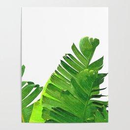 Palm banana leaves tropical watercolor illustration Poster
