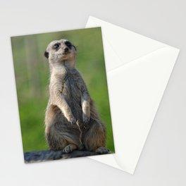 Posing Meerkat Stationery Cards
