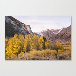 McGee Creek Fall Colors Canvas Print