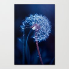 Light In The Sky Canvas Print