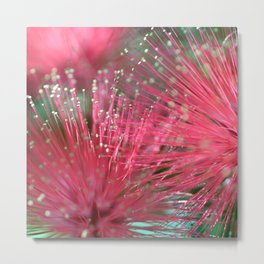 Touchy Feely Metal Print