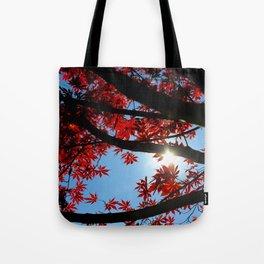 Japanese maple in scarlet against blue fall sky Tote Bag