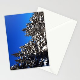 Winter Greens and Blue Sky Stationery Cards