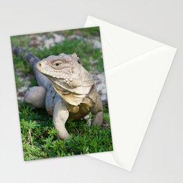 Portrait of a Lizard Stationery Cards