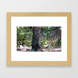 12ne025 Framed Art Print