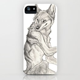 Curious Coyote iPhone Case