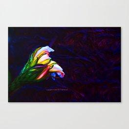 """Cactus Flower At Sunset #85"" Photograph Canvas Print"
