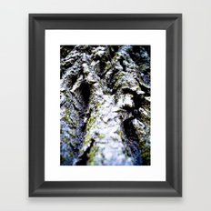 Mossy Oak Framed Art Print