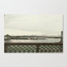Rain Drops in Jersey Canvas Print