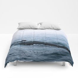Humpback whale in the minimalist fog - photographing animals Comforters