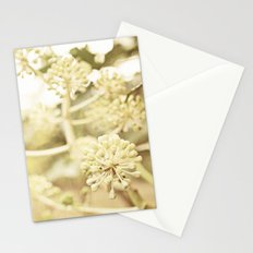 Spring is Here Stationery Cards