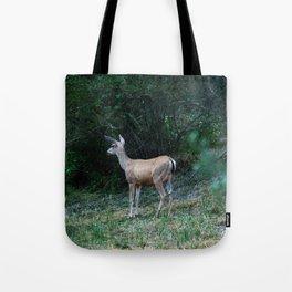 The Forest Fringe Tote Bag
