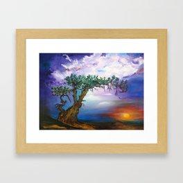 The Tree in Sunset Framed Art Print