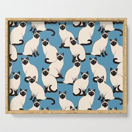 Siamese Cats crowd on blue Serving Tray