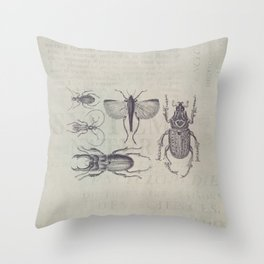 Vintage Beetles And Bugs Throw Pillow