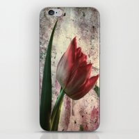 asia iPhone & iPod Skins featuring asia tulip by lucyliu