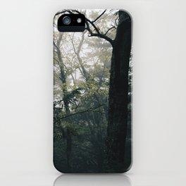 Haines Falls #03 iPhone Case