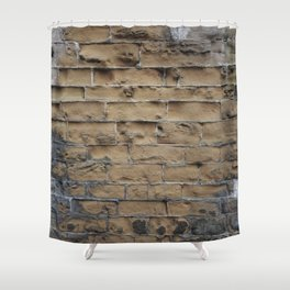 Sandstone Bricks Shower Curtain
