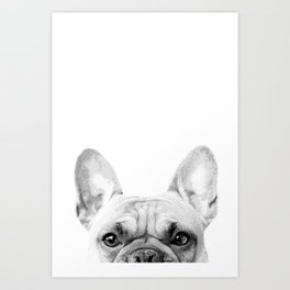Bruno The French Bulldog Art Print
