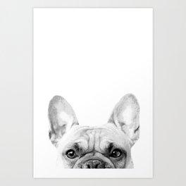 Bruno The French Bulldog Art Print