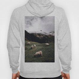 Sheep II / Bavarian Alps Hoody