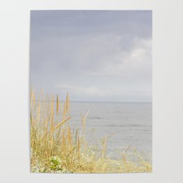 sea and dunes Poster