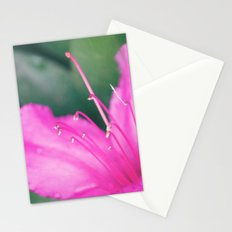 Center of It All Stationery Cards