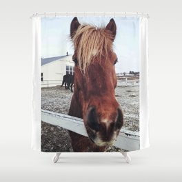 Brown horse face Shower Curtain
