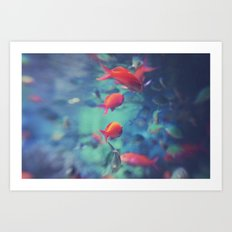 Fish Blur Art Print