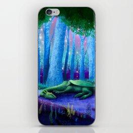 The Sleeping Dragon iPhone Skin