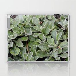Green. Laptop & iPad Skin
