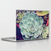 succulent Laptop & iPad Skins featuring Succulent by Holli Dunn Photography