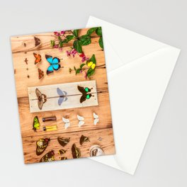 Butterfly Collector Stationery Cards