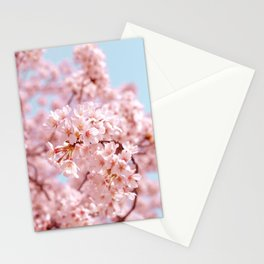 Cherry Blossom Japan Tokyo Stationery Cards