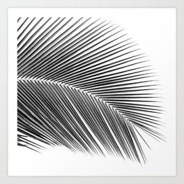 Palm leaf - bw Art Print
