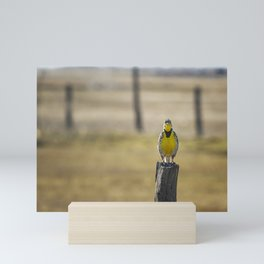 Have Audience Will Sing Mini Art Print