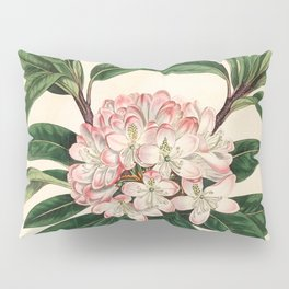 Rhododendron maximum 'Great laurel' Pillow Sham