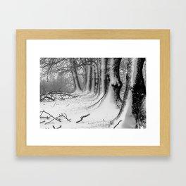 Winter Wonderland 2 Framed Art Print