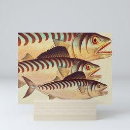 Fish Classic Designs 8 Mini Art Print