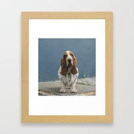Devin Framed Art Print