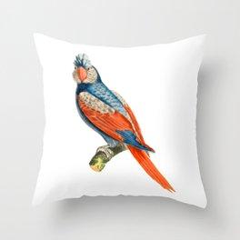 Bird, Parrot, Species, Perch, Red, Blue, Beak, Nature. Vintage. Retro. Illustration.  Throw Pillow
