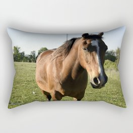Brown Horse in a Pasture Rectangular Pillow