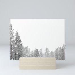 Winterland // Snowy Landscape Photography White Out Winter Pine Tree Artwork Mini Art Print
