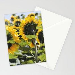 Sunflower Vol.6 Stationery Cards
