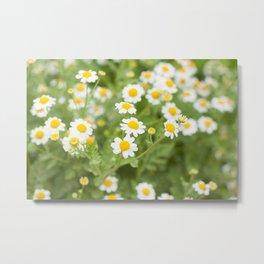 Sweet Flowers v. 2 Metal Print