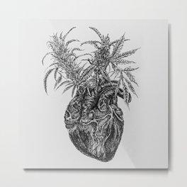 TBC<THC Metal Print